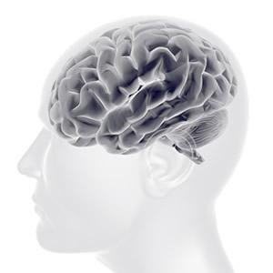脳の病気とその治療のイメージ
